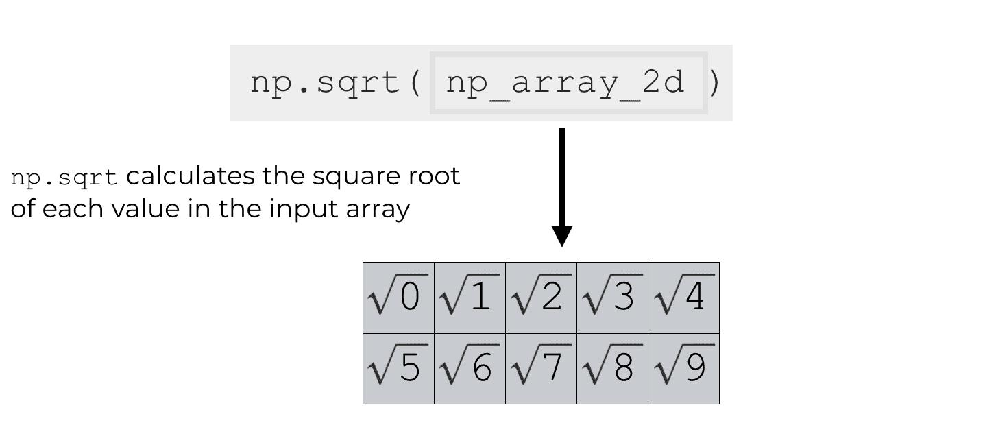 Numpy Square Root Explained Sharp Sight